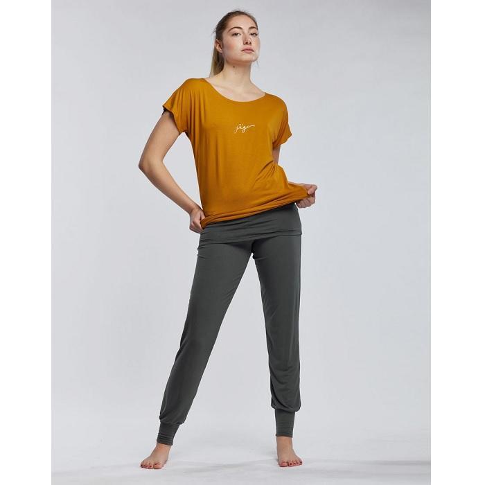 Ava yogi ambre 2